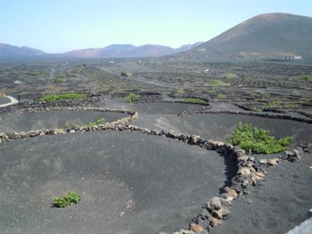 Canarias 2538