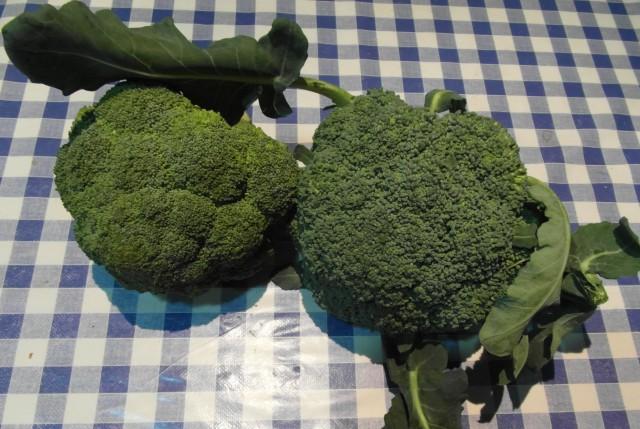 brócoli 3